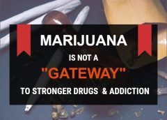 "Marijuana is not a ""gateway"" to stronger drugs and addiction"